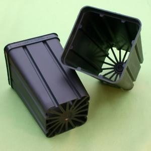"Vaso quadrato rigato ""STOP"" cm 9x9x13 (speciale per Ariocarpus)"